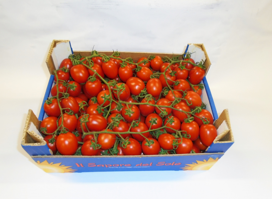 piccadilly tomaten